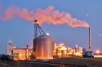 The Effects of Policy and Strategic Factors on Investment in Fuel-Ethanol Plants