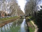 Water and Bioenergy